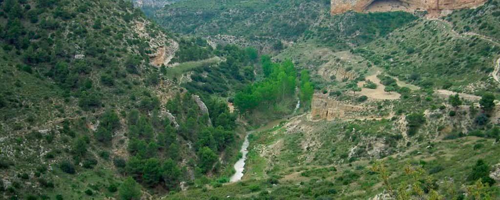 Aragón por los cinco sentidos río martín