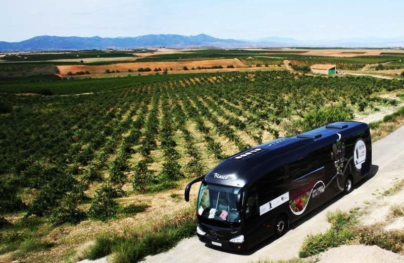 Bus del Vino Cariñena 2019