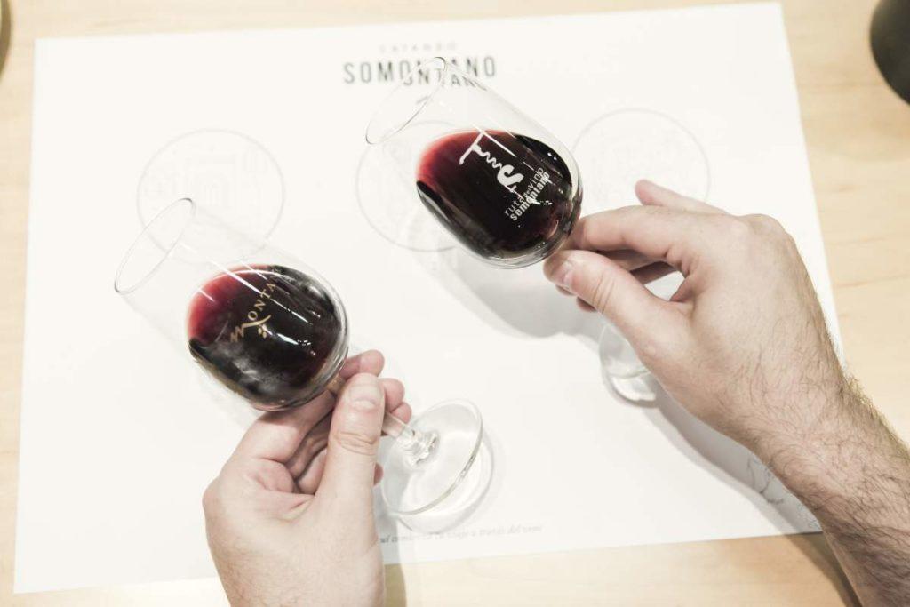 Ruta del Vino Somontano
